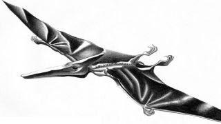 Pterodactylus | Enciclopedia sobre Dinosaurios