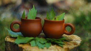 Чай из фенхеля для похудения