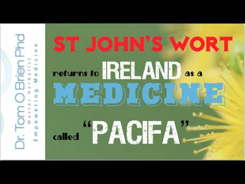 Big Pharma hijacks St John's Wort | Herbs for depression