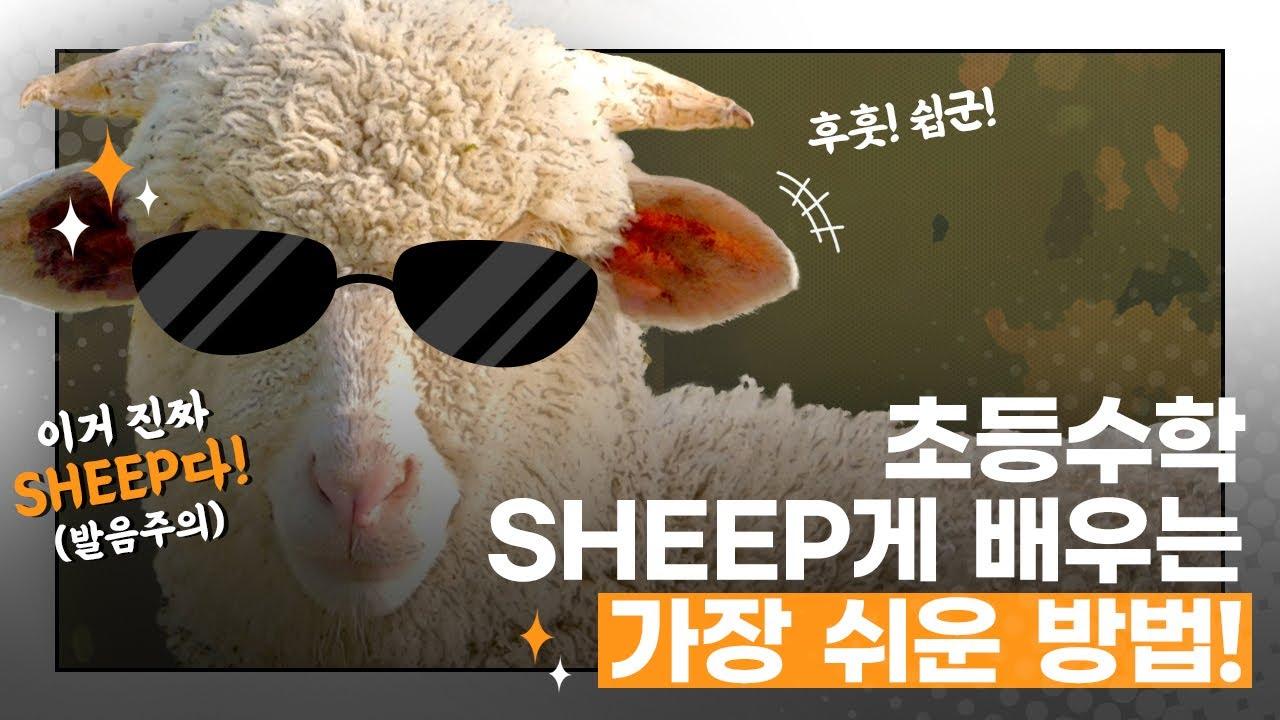 초등수학, 어렵다고? 쉽(sheep)게 배우는 법 알려줄게! (feat. 천재교과서)