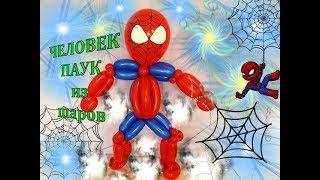как сделать Человека паука из воздушных шаров ШДМ / Spiderman of the balls