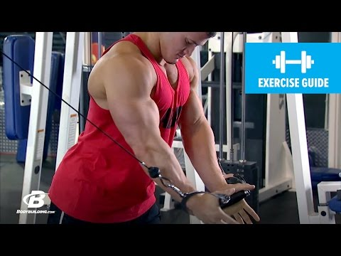Cable Fly with Hunter Labrada | Exercise Guide