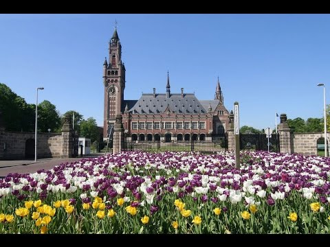 10 Most Popular Attractions in The Hague