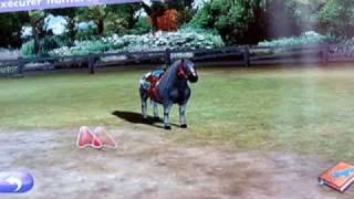 pony friend 2 vidéo film.wmv