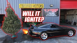 Download 1000hp Supra Anti-Lag vs. Dried Up Christmas Tree! Mp3 and Videos