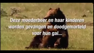 Voice-over Mike Kuyt - tv commercial WSPA