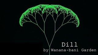 "Japanese Experimental Rock ""Dill"" by Wanana-Bani Garden(ワナナバニ園)自作楽器"
