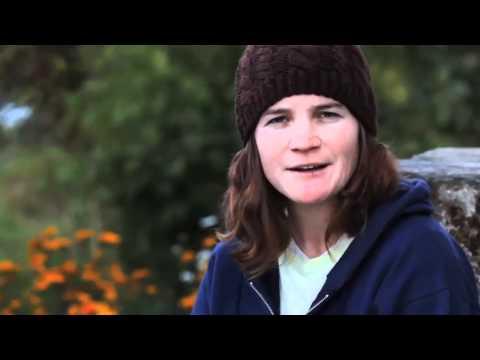 Trailer do filme The Mountain Between Us