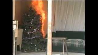 Incendio de casa por árbol de navidad, Azcapotzalco.
