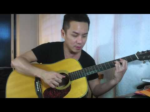 LR Baggs Lyric Pickup DEMO 2 Review on the Martin HD28V in Singapore