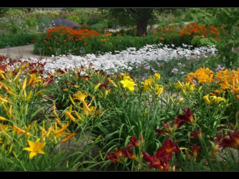 How to start a perennial flower garden youtube how to start a perennial flower garden mightylinksfo Image collections