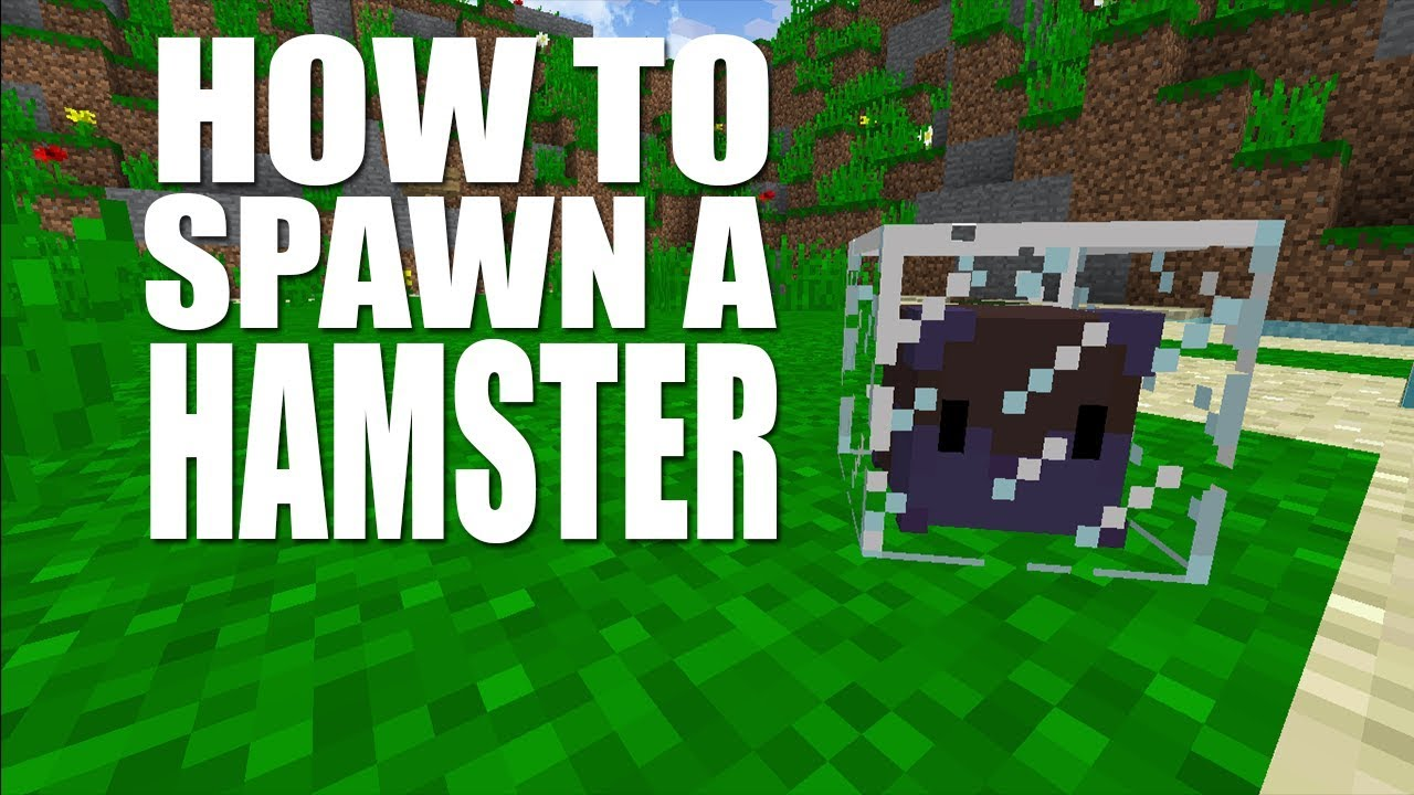 minecraft how to spawn a hamster no mods no addon youtube