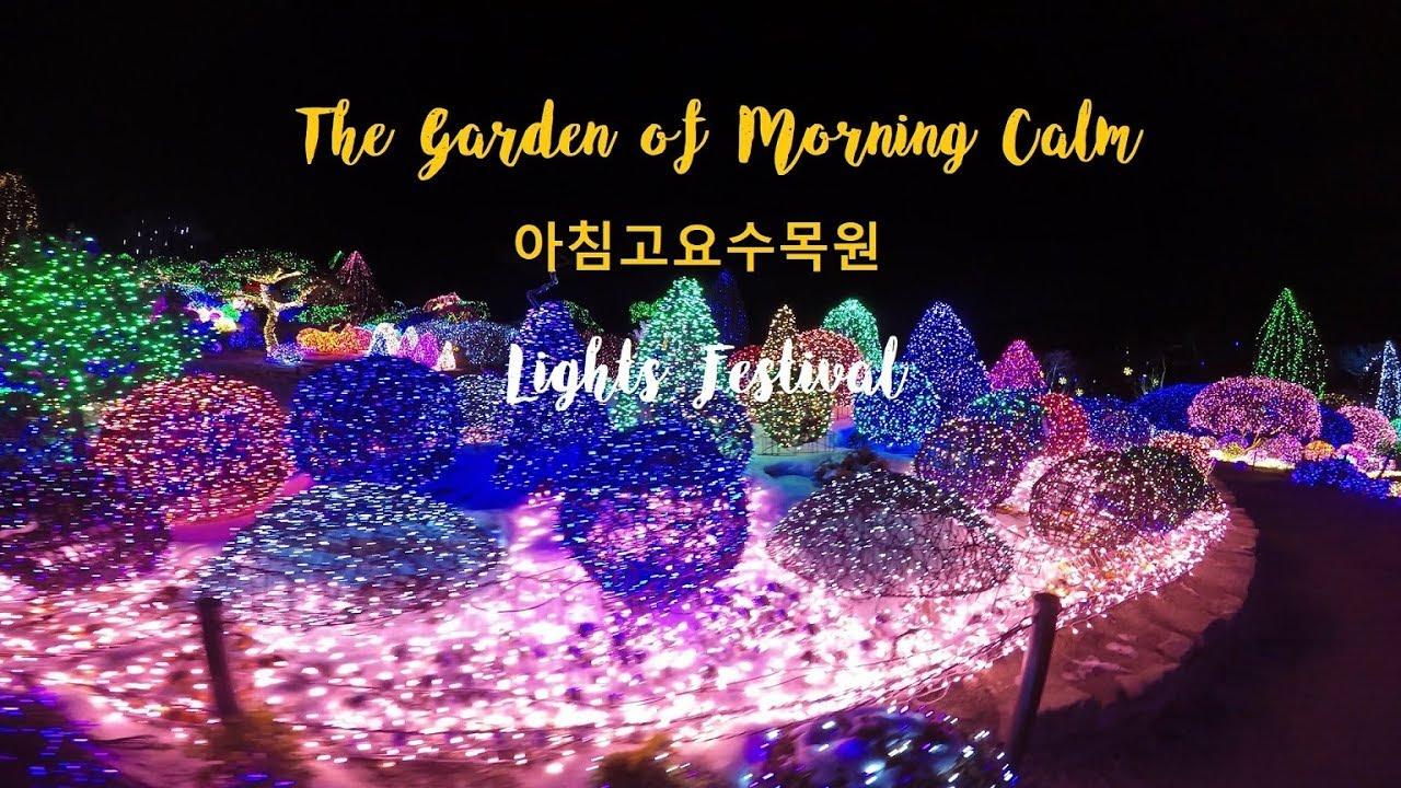 south korea the garden of morning calm lights festival. Black Bedroom Furniture Sets. Home Design Ideas