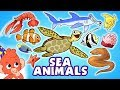 Learn Sea Animals for Kids | Ocean animals names cartoon | Club Baboo