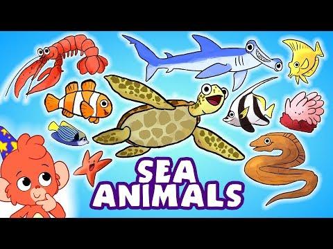 Learn Sea Animals for Kids   Ocean animals names cartoon   Club Baboo