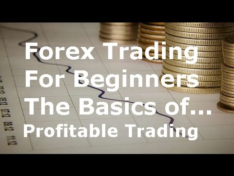Learn Currency Trading For Beginners The Basics Of Successful