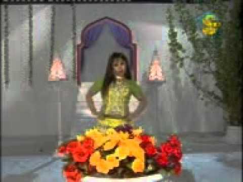 Aani Kot Ke Japh 03459435363mp4 Youtube