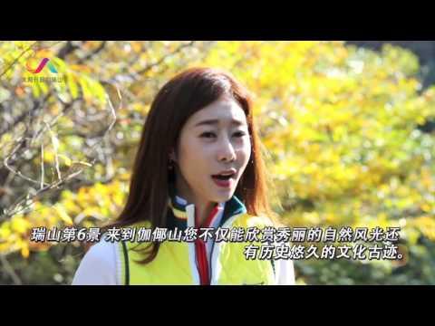 South Korea Travel Guide , দক্ষিণ কোরিয়া
