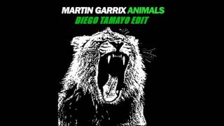 Martin Garrix   Animals Diego Tamayo Edit