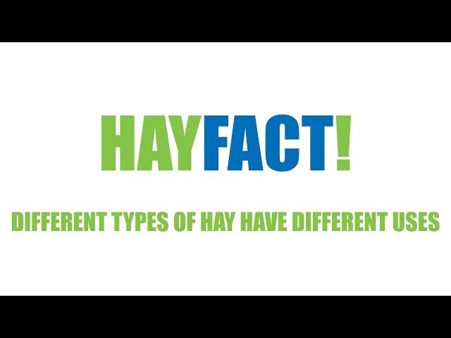 Hay Facts! - Different Types of Hay have Different Uses