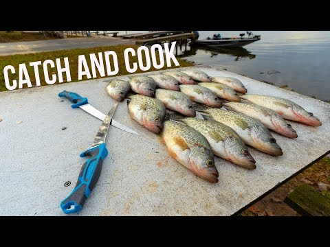 WINTER CATCH AND COOK! So Many Fish We Couldn't Count