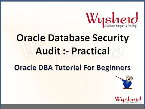 Examples on Oracle Database Auditing |  Oracle Database Secu