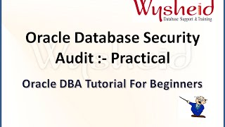 Examples on Oracle Database Auditing |  Oracle Database Security | auditing in oracle 11g