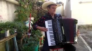 Wilsinho comenta a live dos Baluartes
