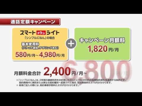 イーモバイル 【料金革命】通話定額キャンペーン