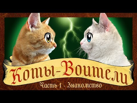 КОТЫ ВОИТЕЛИ 1 СЕРИЯ : СТАНЬ ДИКИМ! История кота РЫЖИКА! кот Малыш и Мурка WARRIOR CATS