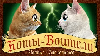 CATS-WARRIORS: GO WILD! The story of a cat GINGER! cat Kid and cat Murka WARRIOR CATS animation