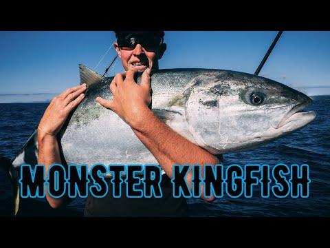 Monster Kingfish