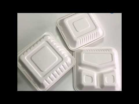Compostable Food Container Bagasse Biodegradable Burger Box