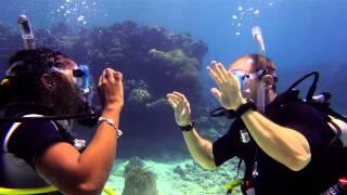Amazing underwater wedding proposal in Comoros Islands