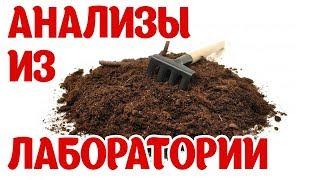 Почва для рассады!!!! Купить или сделать самому? Мы сравнили