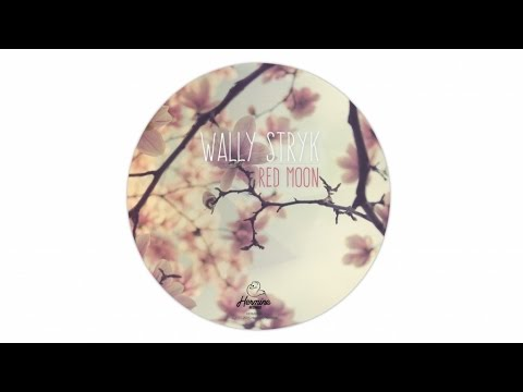 Wally Stryk - Landed [Hermine Records 046]