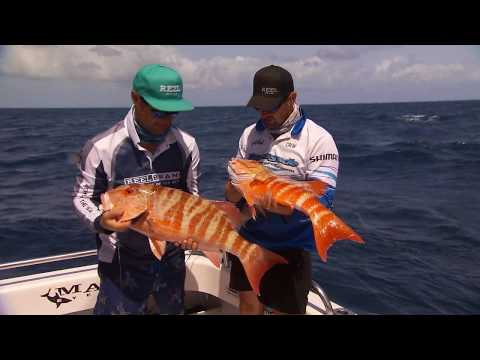 Great Reef Fishing Whitsunday's IFISH