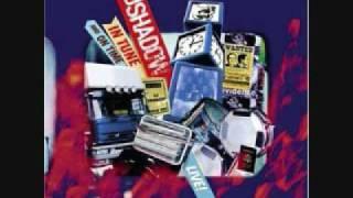 Halfway Home - DJ Shadow