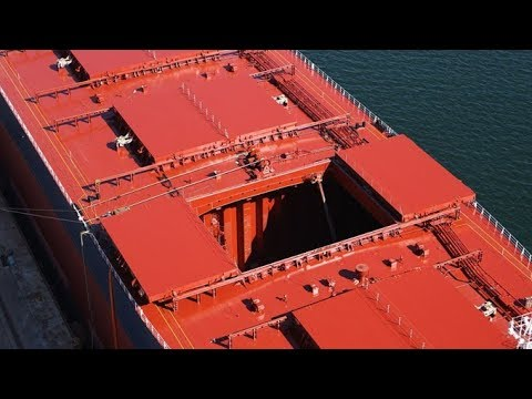 Merchant Navy | Inside Bulk Carrier Hold