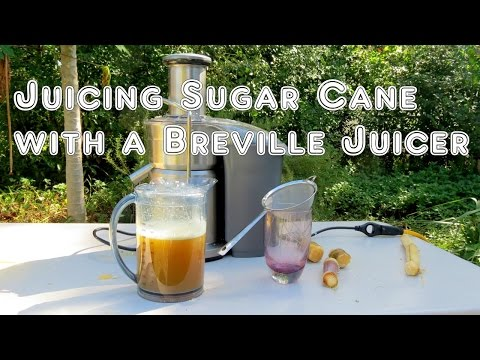 How to Juice Sugar Cane with a Breville Juicer