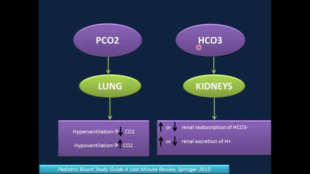 Arterial Blood Gas Analysis (ABG) - YouTube