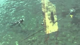 Подводная охота на Черном море. Учебный фильм.