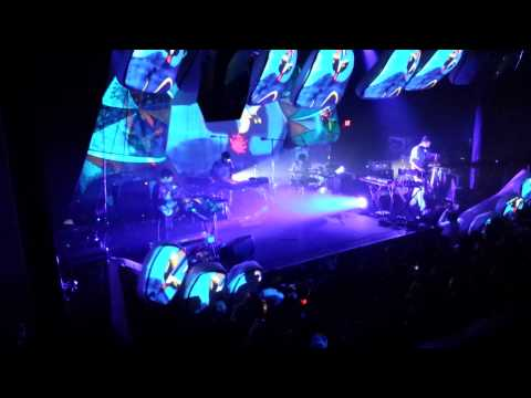 Did You See The Words - Animal Collective 10.27.13