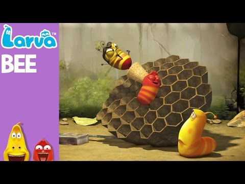 [Official] Bee - Mini Series from Animation LARVA