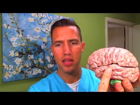 Thyroid Brain Fog and Memory Loss With Hashimoto's, Graves' and Hypothyroidism