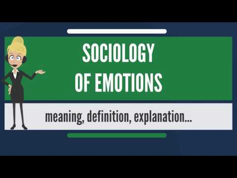 Sociology Of Emotions On Wikinow News Videos Facts