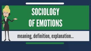 What is SOCIOLOGY OF EMOTIONS What does SOCIOLOGY OF EMOTIONS mean SOCIOLOGY OF EMOTIONS m ...