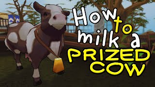 Runescape Basics - How to milk a prized cow