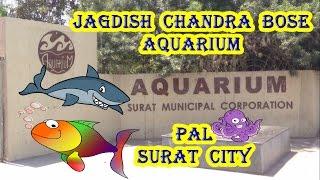 Jagdish Chandra Bose Aquarium Surat City Gujarat | જગદીશચંદ્ર બોઝ માછલીઘર સુરત