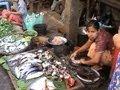 Burma Myanmar Yangon Theingyi Market